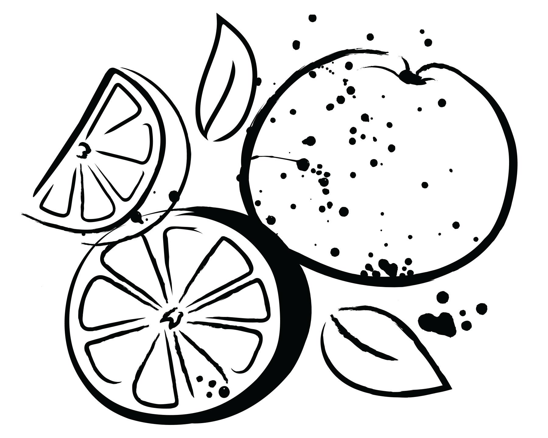 whole_foods_market_rebrand_illustration_oranges_laura_guard